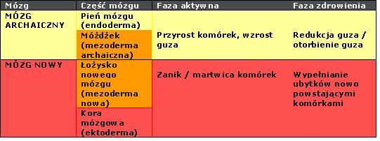 3 prawo_mozgi