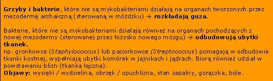 mezoderma_mikroby